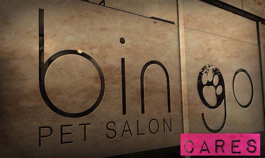 Bingo pet salon 27 billeder 39 anmeldelser for 4th street salon