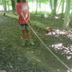 Adventure Links 13 Photos Summer Camps 13220 Yates