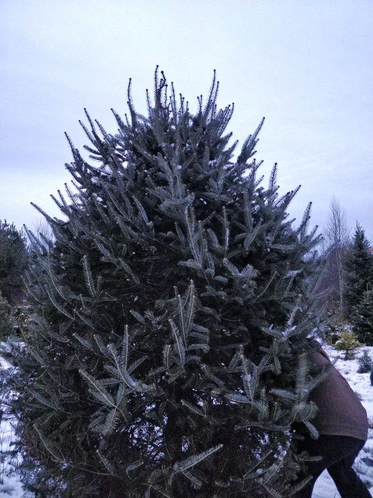 Trees To Please: 111 Smithfield Rd, Norridgewock, ME