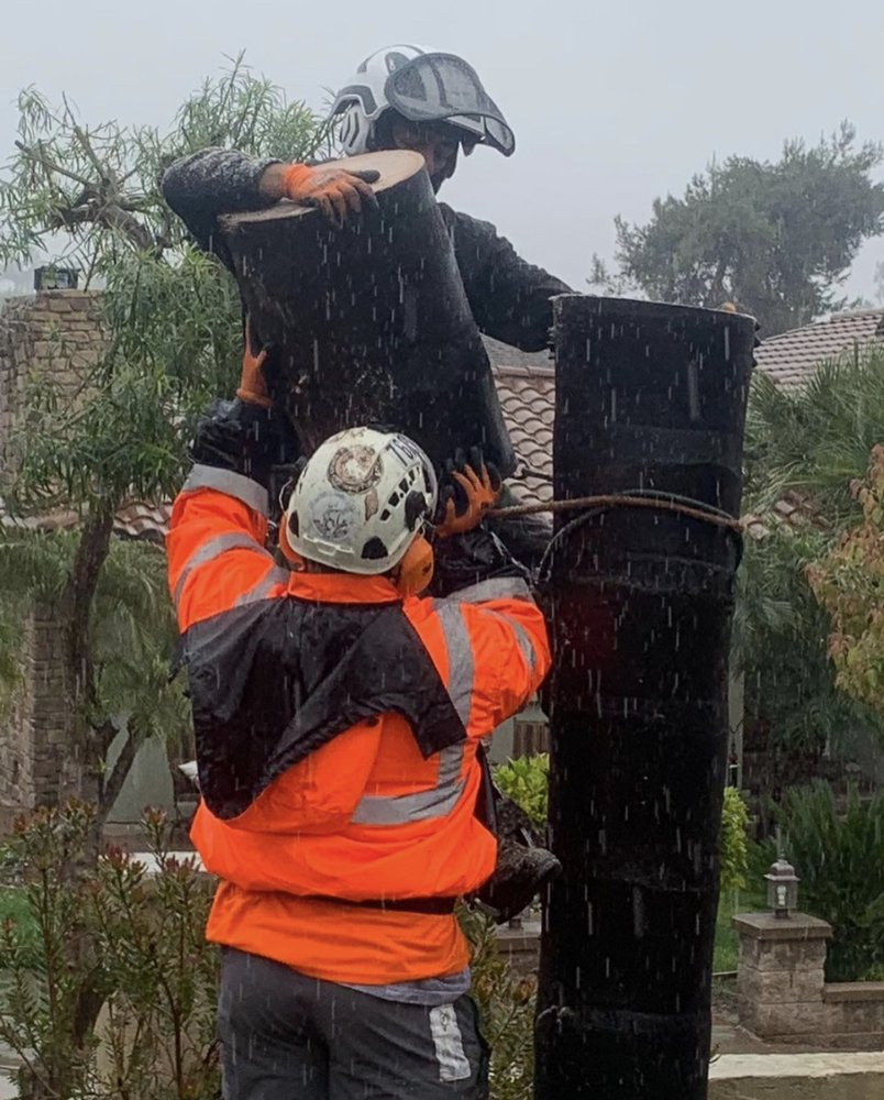 Pena Tree Service