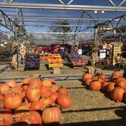 Nick S Garden Center Farm Market 102 Photos 101 Reviews Nurseries Gardening 2001 S
