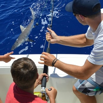 Start me up sport fishing charters 61 photos 103 for Start me up fishing