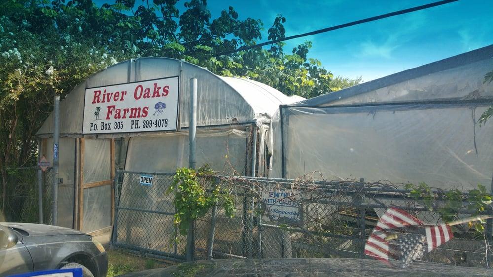 River Oaks Nursery: Pennsylvania Ave, San Benito, TX