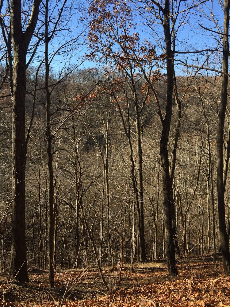 Cedar Creek Park: 453 Evergreen Dr, Belle Vernon, PA