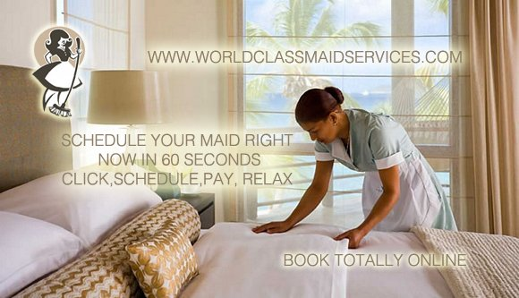 World Class Maid Services