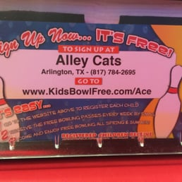 Alley cats coupons arlington