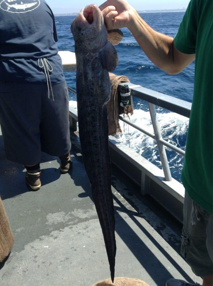 Eeeeeel yelp for Marina del rey fishing