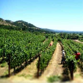 Wineries to Watch: Shafer Vineyards | Decanted Wine & Beer Blog