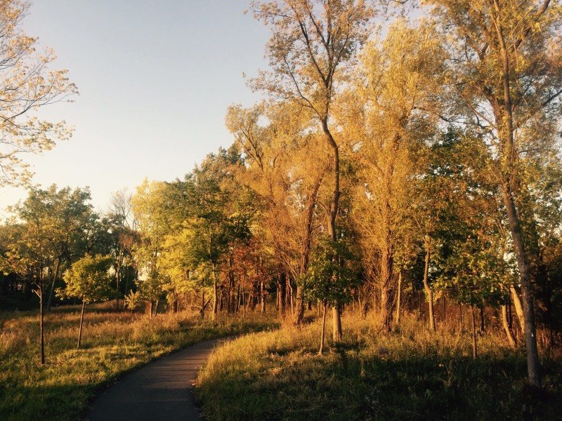 West Ridge Nature Preserve