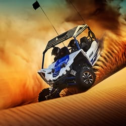 Easy Living Yamaha Polaris Request A Quote 23 Photos