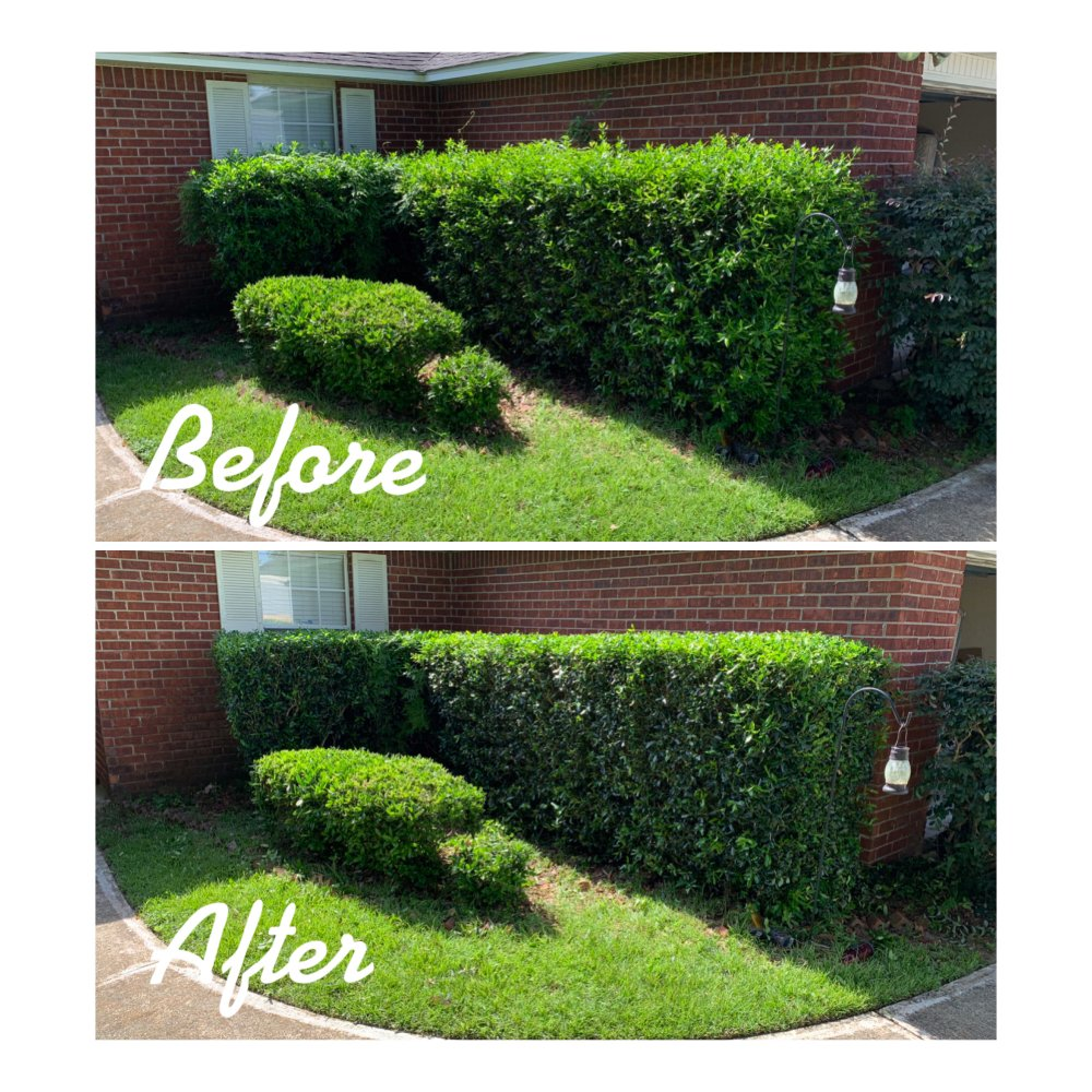 Christian's Lawn Care: 10232 Chemstrand Rd, Pensacola, FL