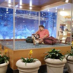 orlando international airport mco 1774 photos 2328 reviews rh yelp com