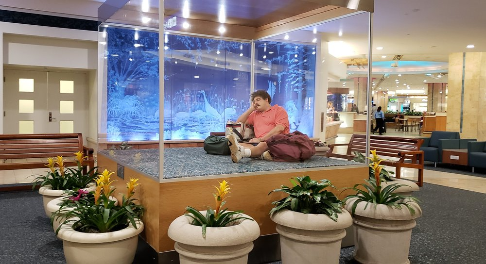 orlando international airport mco 1915 photos 2416 reviews rh yelp com