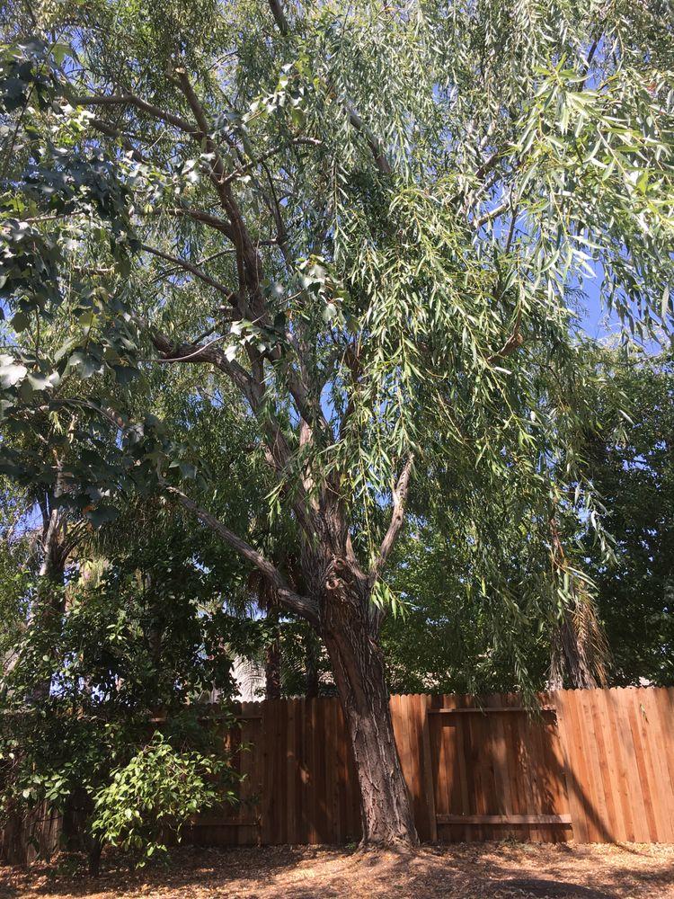 Hardin's Tree Service