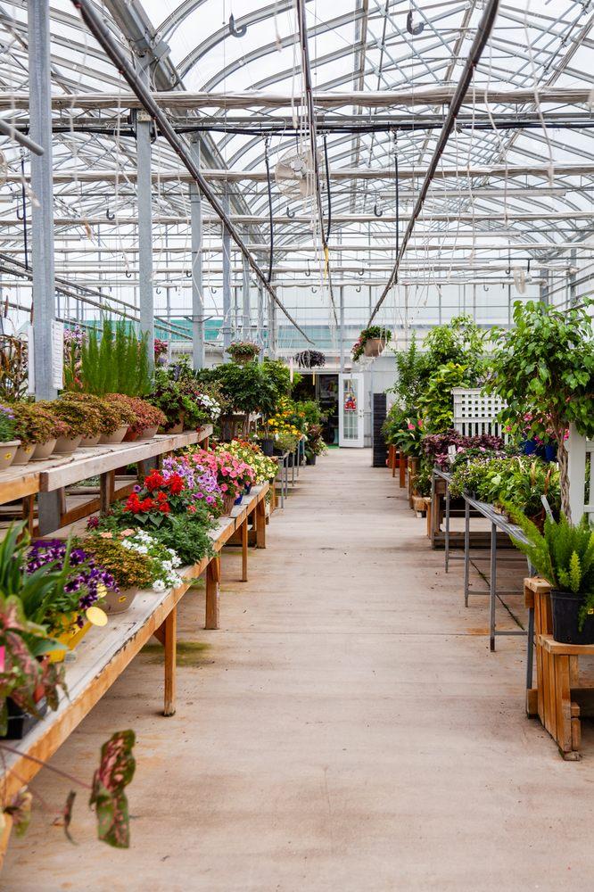 Shamrock Nursery: 49368 E US Hwy 20, O'Neill, NE