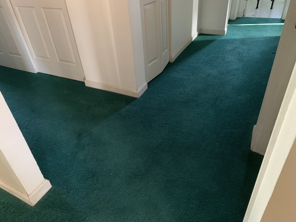 Esteam Carpet and Tile Care - 2019 All You Need to Know