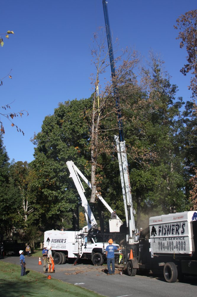 Fisher's Tree Service: 1323 N Post Rd, Shelby, NC