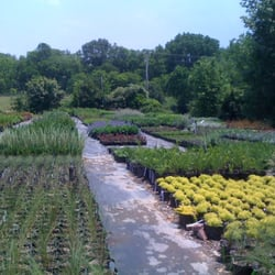 Photo Of Hewitt Garden Design Center Franklin Tn United States