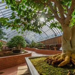 Photo Of Phipps Conservatory And Botanical Gardens   Pittsburgh, PA, United  States. Ornate