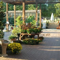 Surprising Forest Lake Greenhouses Nurseries Gardening 3108 Home Interior And Landscaping Oversignezvosmurscom