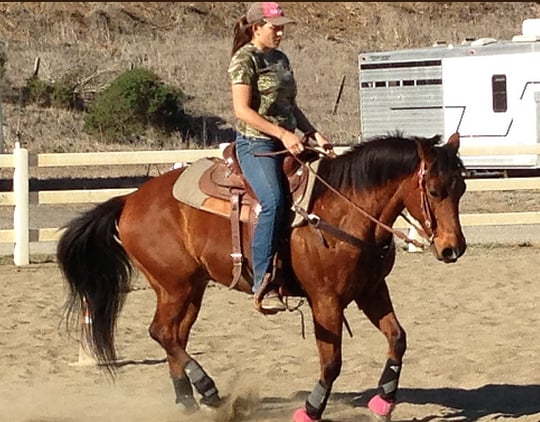 AR Riding and Training: 20881 Houle Creek Rd, Frenchtown, MT