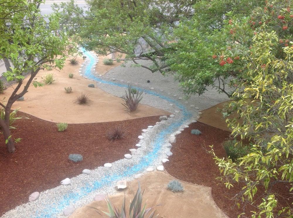 Water saving desert landscaping ideas yelp for Water saving garden designs