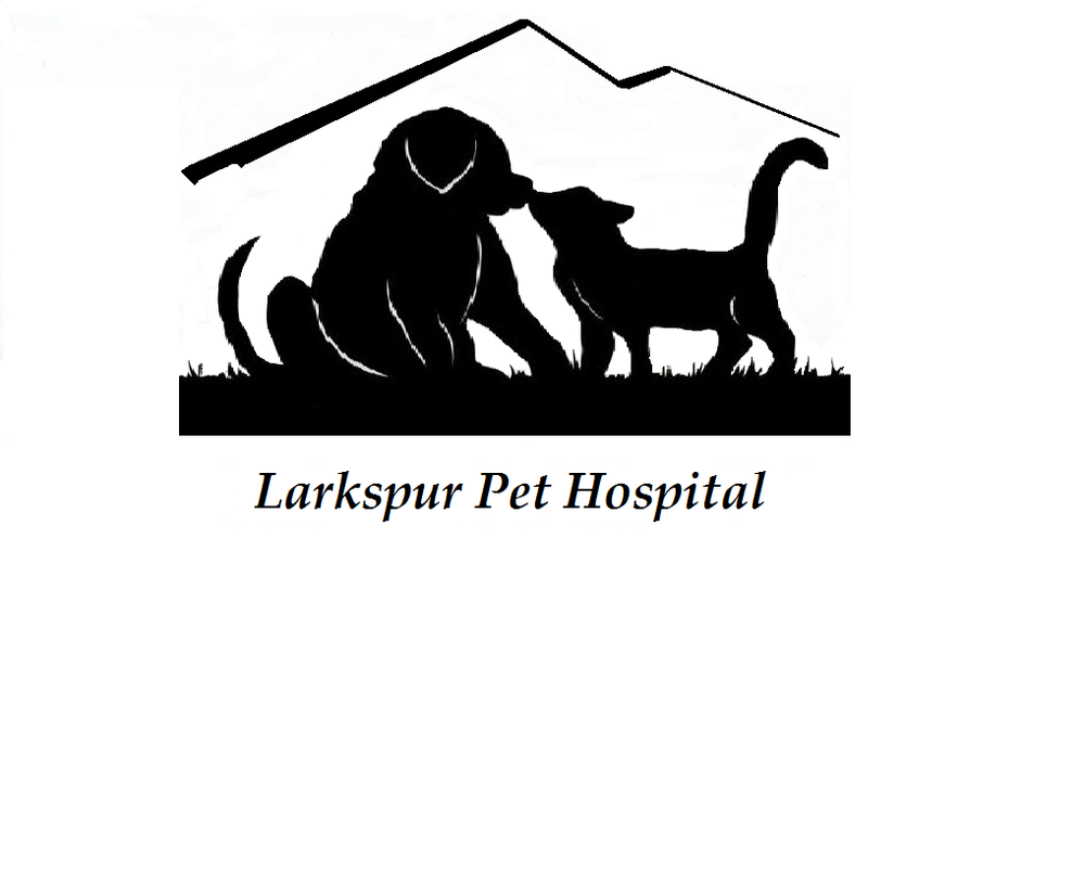 Larkspur Pet Hospital: 8825 Spruce Mtn Rd, Larkspur, CO