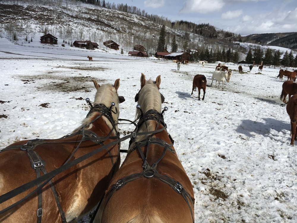 Vista Verde Guest Ranch: 58000 Cowboy Way, Steamboat Springs, CO