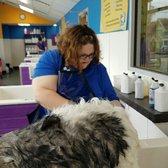 Community bark dog wash groom 26 photos 50 reviews pet photo of community bark dog wash groom milwaukee wi united states solutioingenieria Gallery