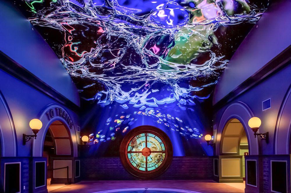 St. Louis Aquarium at Union Station: 201 S 18th St, St. Louis, MO
