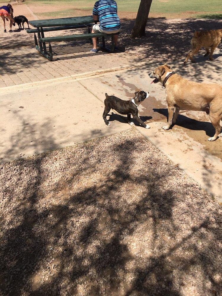 Shawnee Bark Park