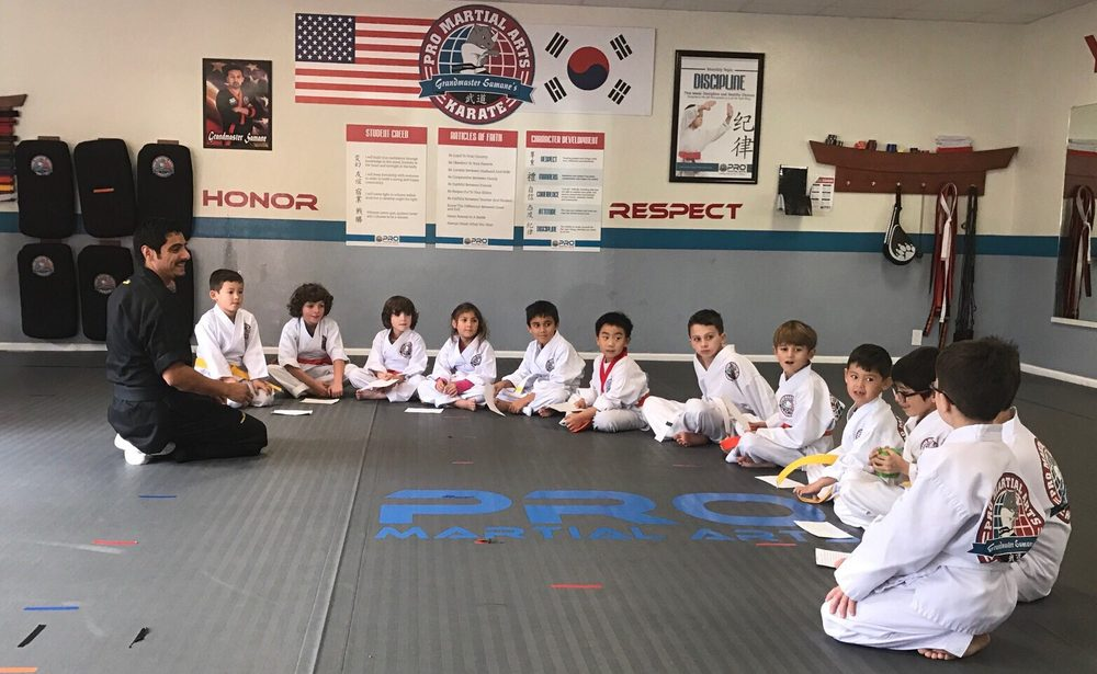Pro Martial Arts - Campbell: 236 E Campbell Ave, Campbell, CA