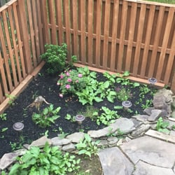 Charmant Photo Of Patch Ou0027 Grass   Bristow, VA, United States. This Is