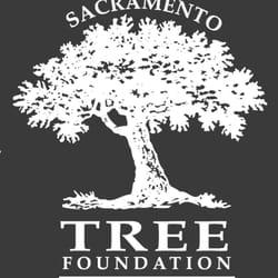 Top 10 Best Craigslist Free Stuff In Sacramento Ca Last Updated