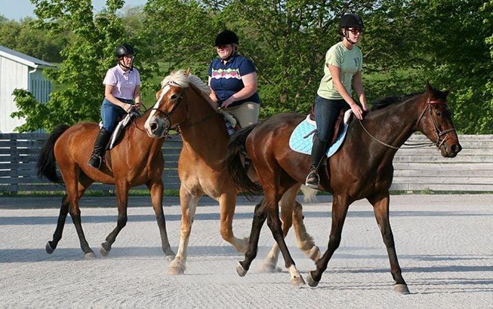 Social Spots from Sunburst Horsemanship School