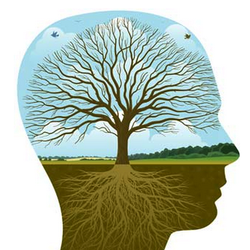 Delray Holistic Therapy Counseling Mental Health 272 Penn St