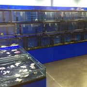 Foto Van Aquascape Fish Imports Ltd Sutton Coldfield West Midlands Verenigd Koninkrijk