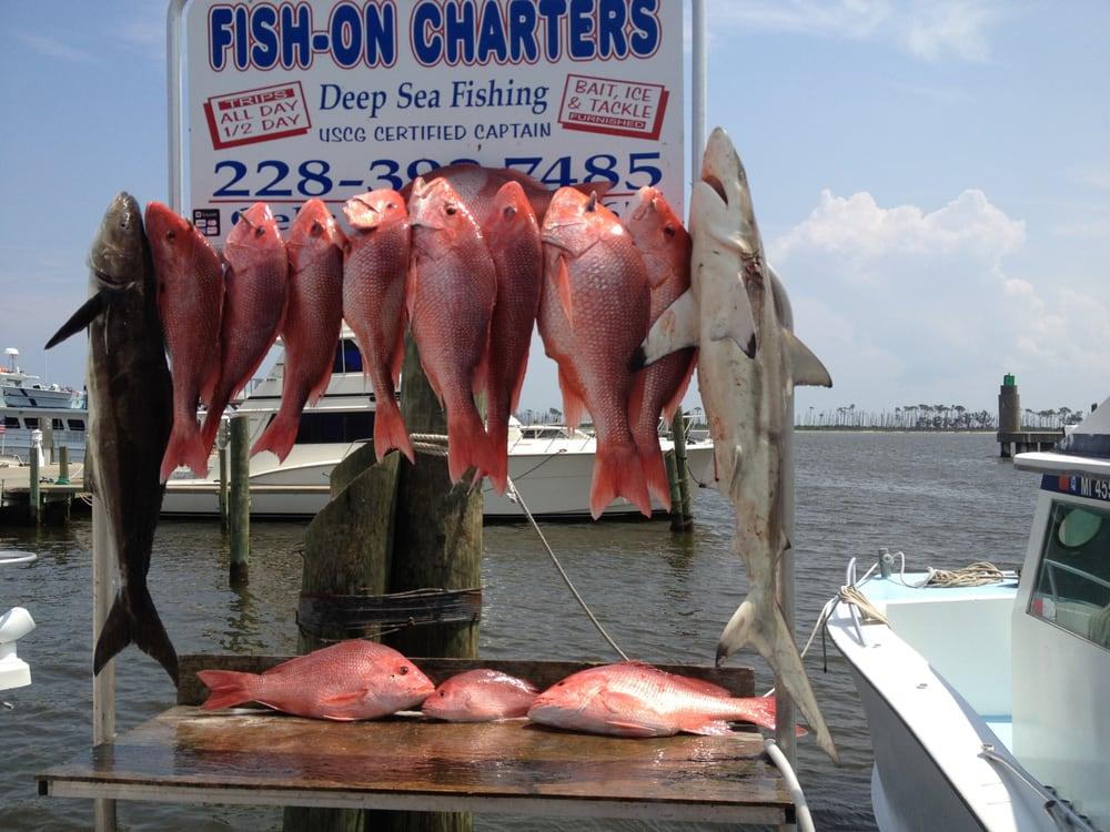 Biloxi fishing charters fishing 119 beach blvd biloxi for Mississippi fishing charters