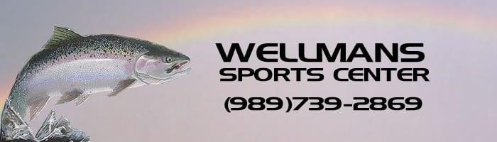 Wellman's Party & Bait: 910 S State St, Oscoda, MI