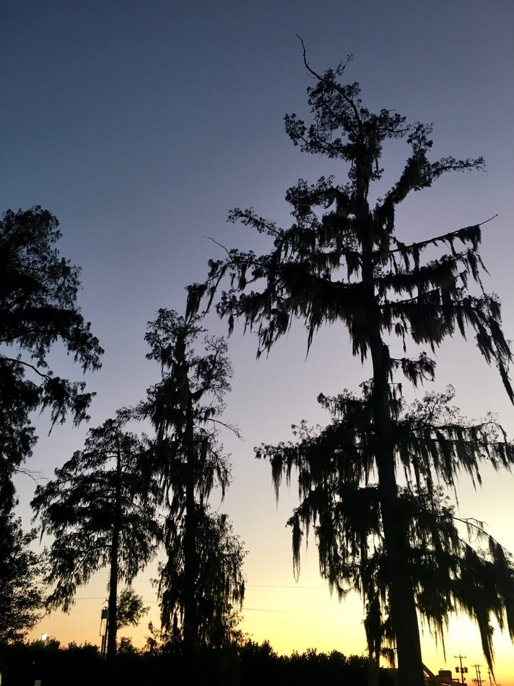 Cypress Lake Resort: 100 Cypress Dr, Berwick, LA