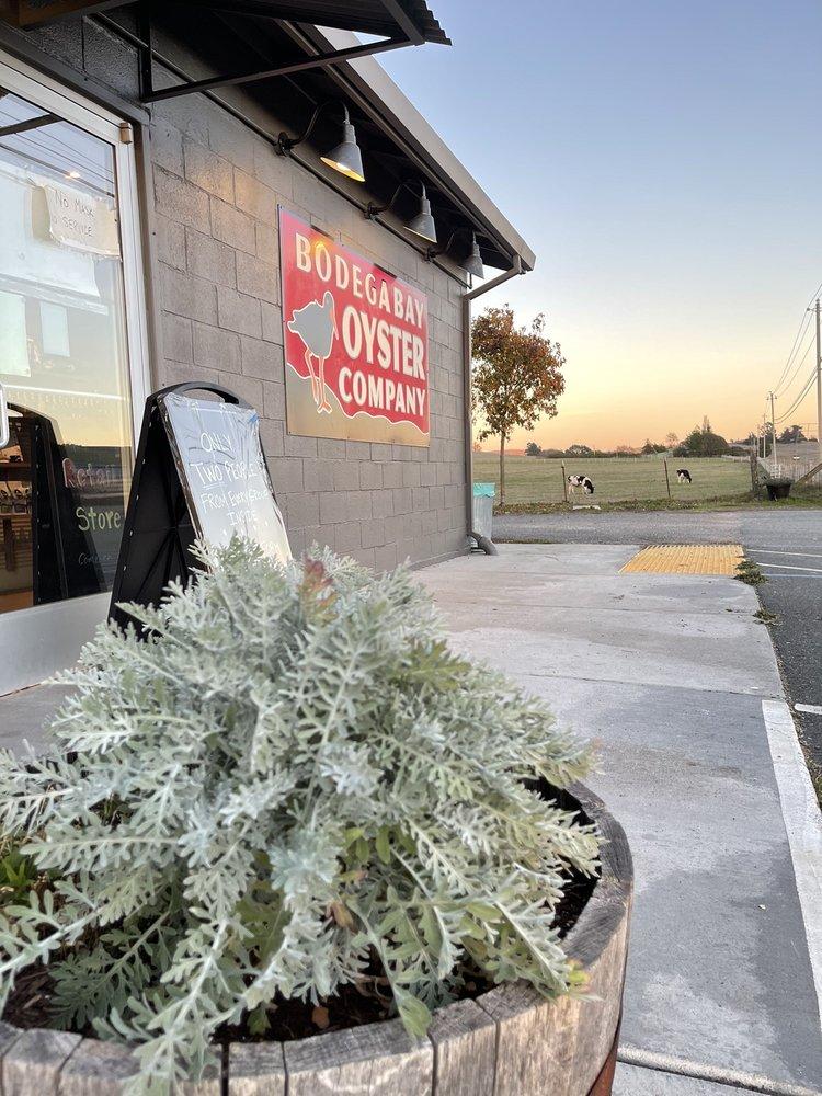 Bodega Bay Oyster: 12830 Valley Ford Rd, Petaluma, CA