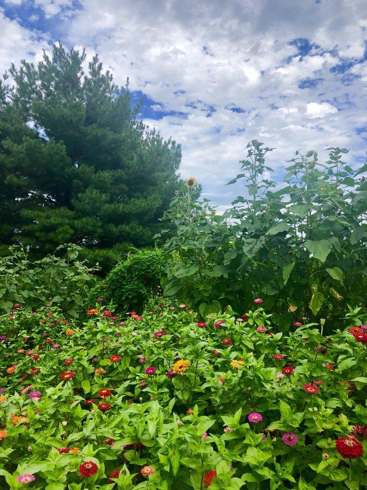Martin's Hillside Orchard: 2024 Ashland Rd, Ceresco, NE