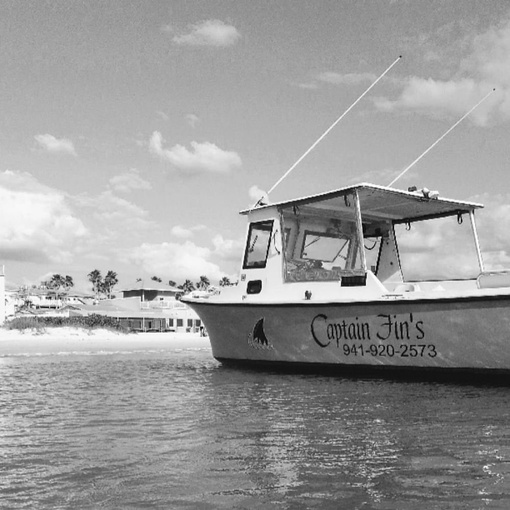Captain Fins Sightseeing and Boat Tours: 1325 Gulf Dr S, Bradenton Beach, FL