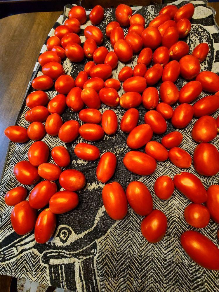Darling's Farms & Greenhouses: 40 Hildebrandt Rd, Dallas, PA