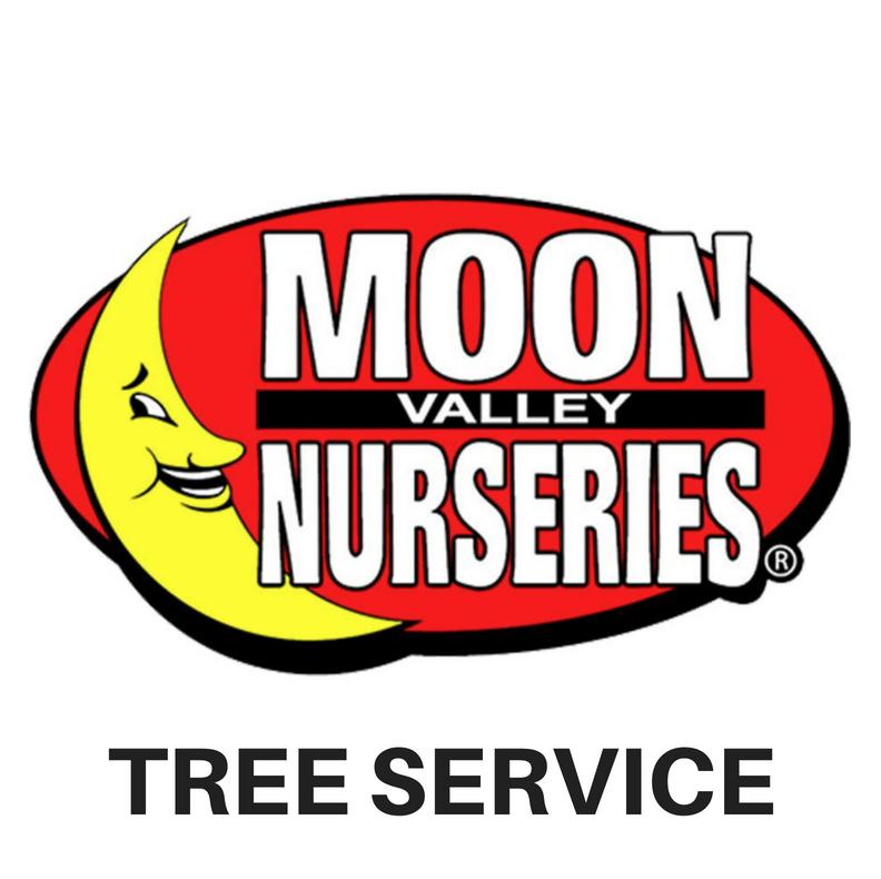 Moon Valley Nursery Tree Removal