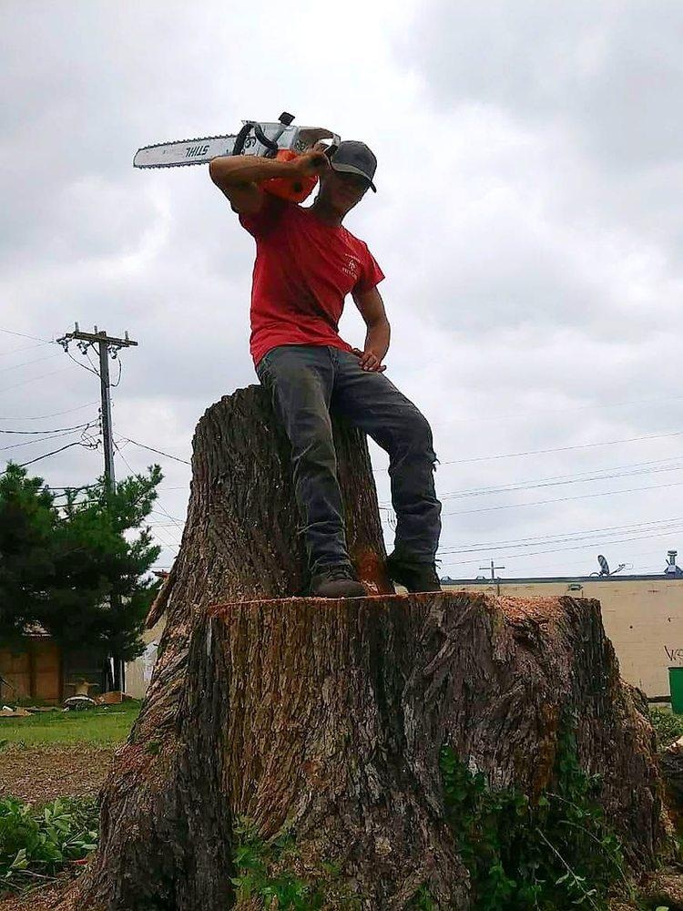 Atkins Tree Care