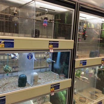 petsmart 11 reviews pet stores 3698 e franklin blvd gastonia