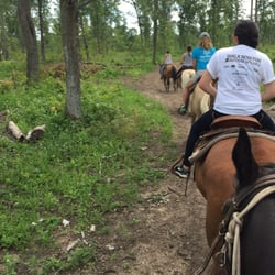 4c2f2b447b6 Outback Trail Rides - Horseback Riding - 12210 Pillsbury Forest Rd SW,  Pillager, MN - Phone Number - Yelp