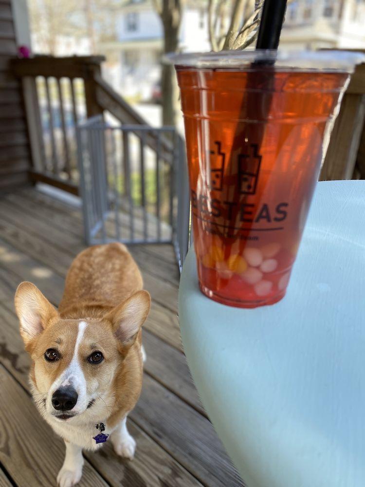 Bes Teas: 498 Pleasant St, New Bedford, MA