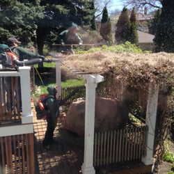 Delicieux Photo Of Patch Landscaping And Snow Removal   Chicago, IL, United States.  Removing